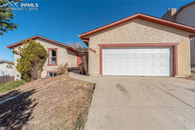 5230 Coneflower Lane, Colorado Springs, CO 80917 (#1726807) :: CC Signature Group
