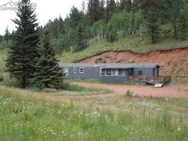 1770 Pathfinder Road, Florissant, CO 80816 (#1727605) :: The Kibler Group