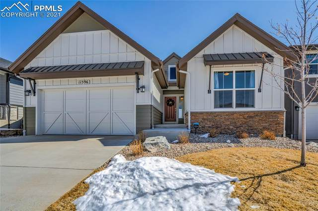 11596 Spectacular Bid Circle, Colorado Springs, CO 80921 (#1728440) :: The Gold Medal Team with RE/MAX Properties, Inc