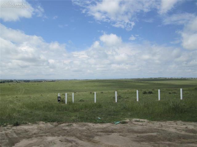 18166 Prairie Coach View, Calhan, CO 80808 (#1730214) :: 8z Real Estate