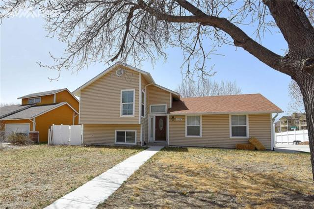 1110 Bayberry Drive, Colorado Springs, CO 80916 (#1733821) :: 8z Real Estate
