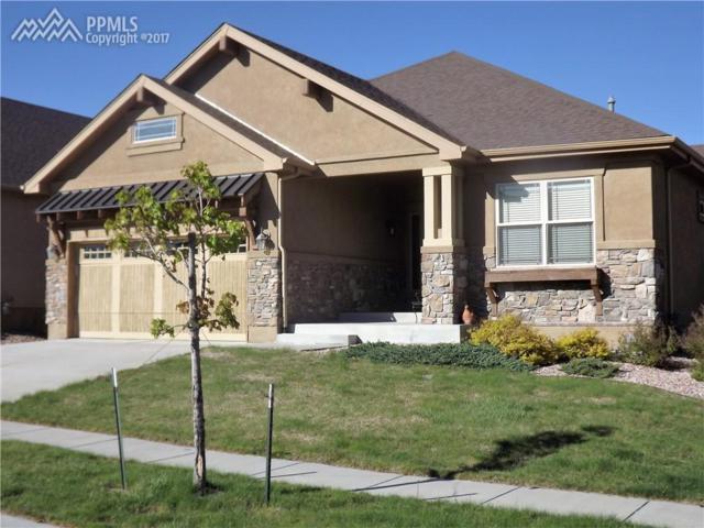 9291 Sky King Drive, Colorado Springs, CO 80924 (#1737739) :: 8z Real Estate