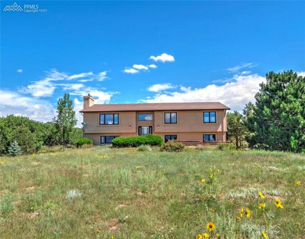 15610 Kingswood Drive, Colorado Springs, CO 80921 (#1739444) :: The Hunstiger Team