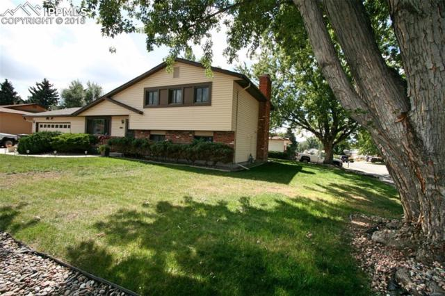 3119 Shadowglen Way, Colorado Springs, CO 80918 (#1741853) :: Action Team Realty