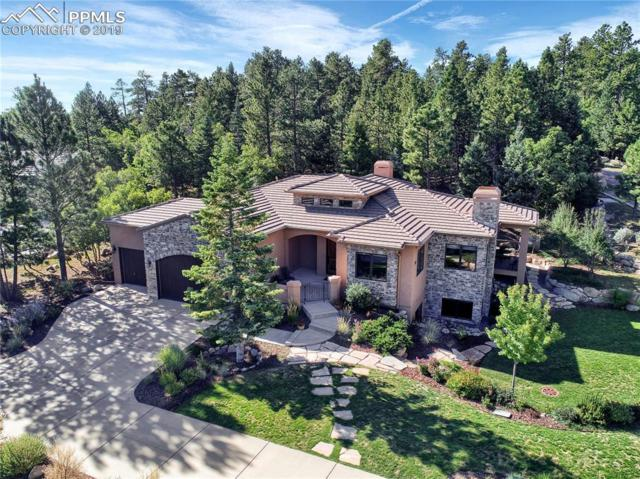 391 Irvington Court, Colorado Springs, CO 80906 (#1741935) :: Tommy Daly Home Team
