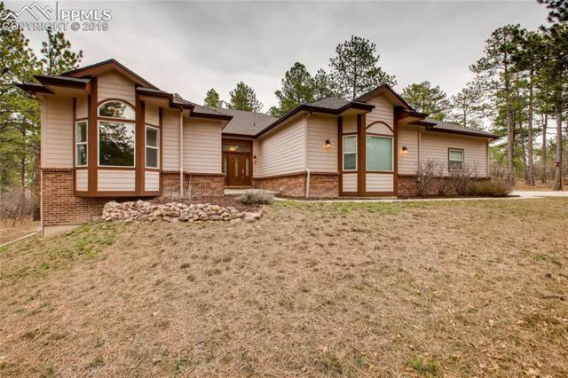 7091 Boreas Road, Larkspur, CO 80118 (#1744104) :: Tommy Daly Home Team