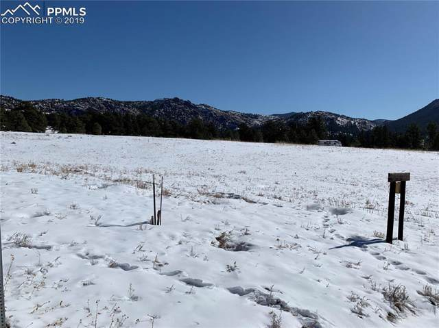 146 Navajo Trail, Florissant, CO 80816 (#1744906) :: CC Signature Group