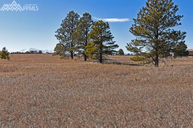 2685 E Highway 105, Monument, CO 80132 (#1745708) :: 8z Real Estate