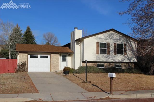 5370 Alturas Drive, Colorado Springs, CO 80911 (#1746230) :: RE/MAX Advantage