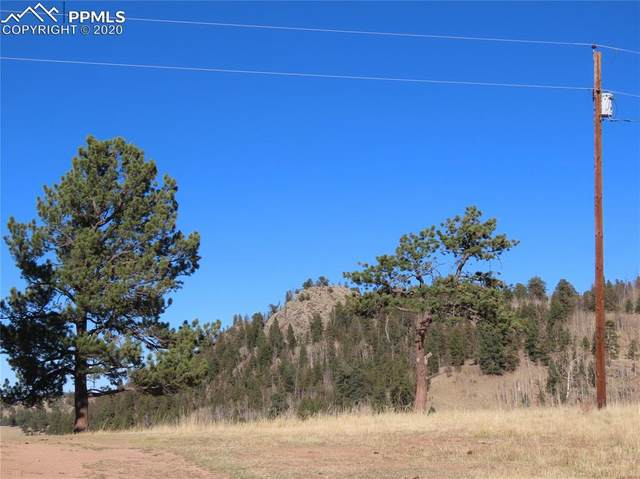 3547 County Road 100, Lake George, CO 80827 (#1749730) :: The Kibler Group