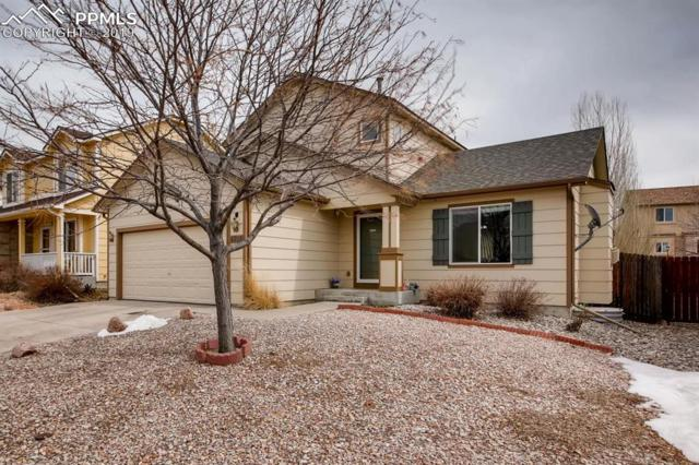 4305 Crow Creek Drive, Colorado Springs, CO 80922 (#1753425) :: The Treasure Davis Team