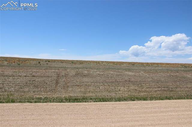2990 Hoofprint Road, Peyton, CO 80831 (#1753964) :: CC Signature Group