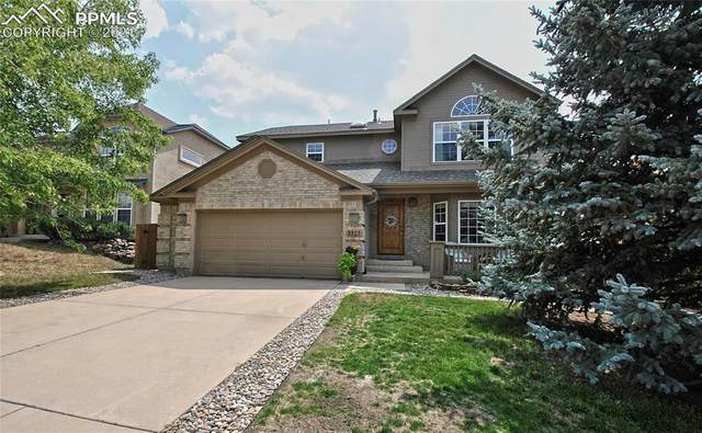 3515 Harbor Island Drive, Colorado Springs, CO 80920 (#1755845) :: Tommy Daly Home Team