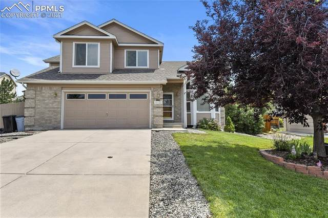 15531 Candle Creek Drive, Monument, CO 80132 (#1758283) :: Action Team Realty
