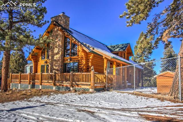 527 Wabash Terrace, Cripple Creek, CO 80813 (#1766992) :: Harling Real Estate