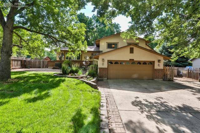 4445 Seesaw Circle, Colorado Springs, CO 80917 (#1769105) :: 8z Real Estate