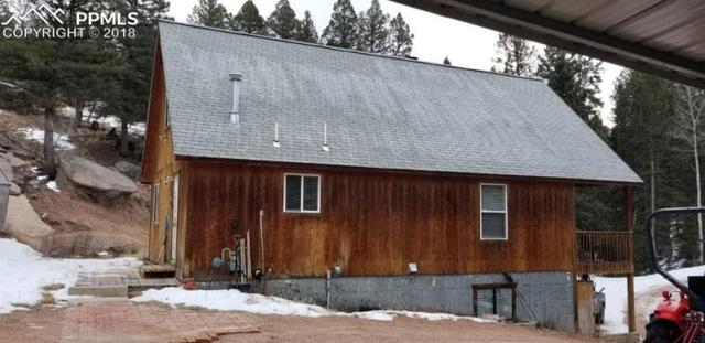 2619 N Mountain Estates Road, Florissant, CO 80816 (#1769666) :: Harling Real Estate