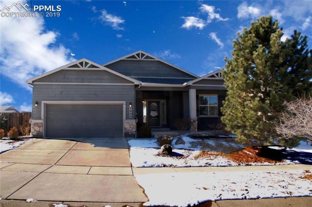 7906 Mount Hayden Drive, Colorado Springs, CO 80924 (#1773760) :: The Kibler Group