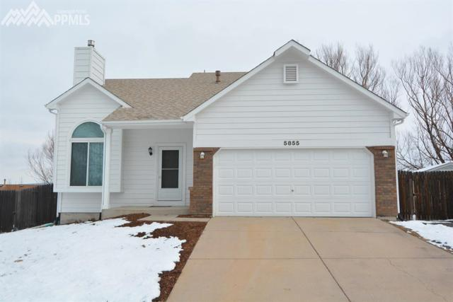5855 Northwind Drive, Colorado Springs, CO 80918 (#1788061) :: 8z Real Estate