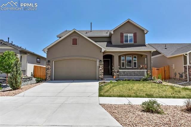 6948 Mustang Rim Drive, Colorado Springs, CO 80923 (#1789638) :: The Treasure Davis Team