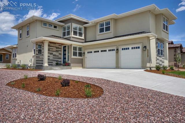 6020 Cubbage Drive, Colorado Springs, CO 80924 (#1794497) :: The Treasure Davis Team