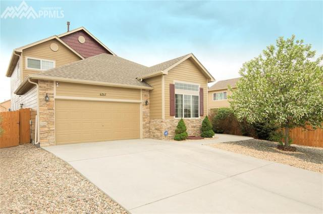 6267 Elk Bench Trail, Colorado Springs, CO 80925 (#1794798) :: 8z Real Estate