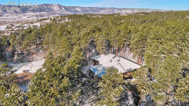 1068 Longspur Lane, Colorado Springs, CO 80921 (#1796270) :: 8z Real Estate