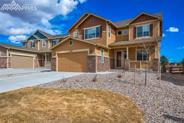 17507 Leisure Lake Drive, Monument, CO 80132 (#1796883) :: The Treasure Davis Team