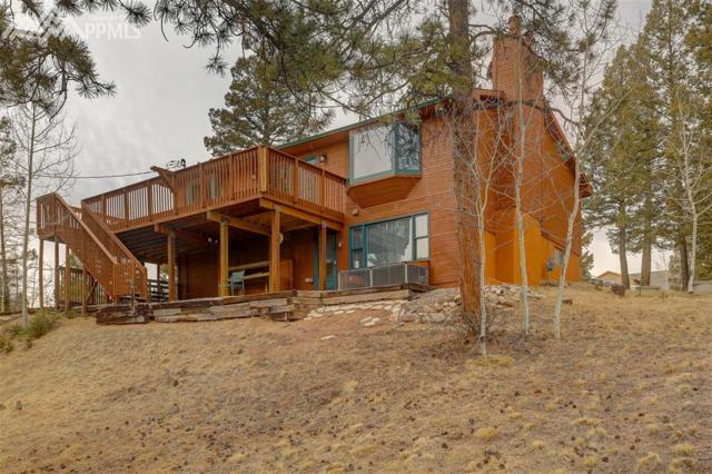 313 Blue Mesa Drive, Divide, CO 80814 (#1798342) :: The Cutting Edge, Realtors