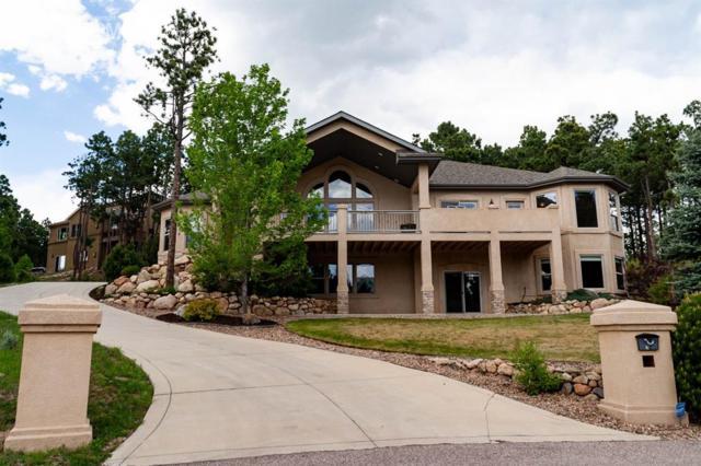 38 Bridle Creek Court, Monument, CO 80132 (#1799784) :: The Daniels Team