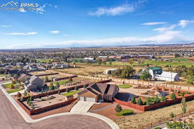 10616 Darneal Drive, Fountain, CO 80817 (#1805010) :: Action Team Realty