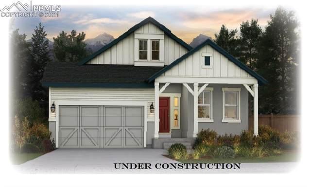 11964 Artful Way, Colorado Springs, CO 80921 (#1808511) :: Venterra Real Estate LLC