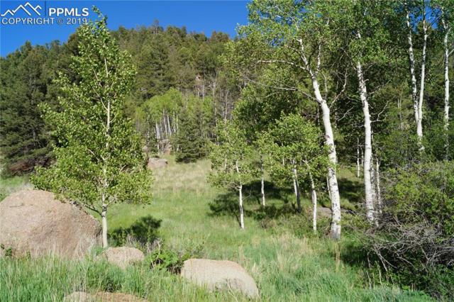 765 Pinon Lane, Florissant, CO 80816 (#1810323) :: Action Team Realty