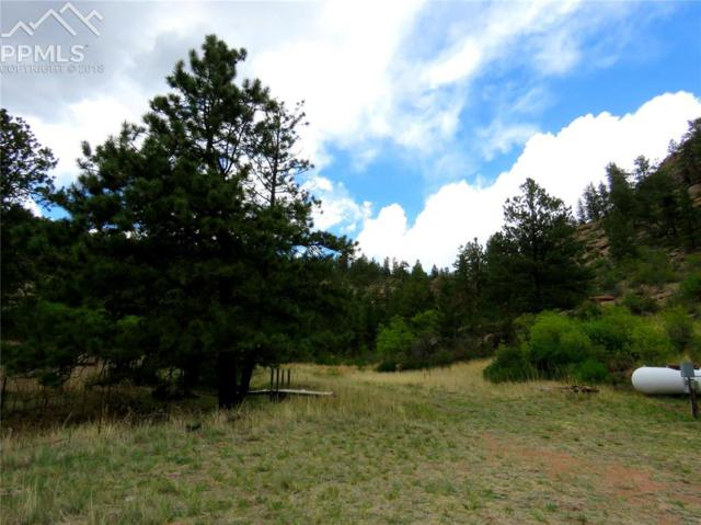 1574 Sioux Road, Florissant, CO 80816 (#1814046) :: The Hunstiger Team