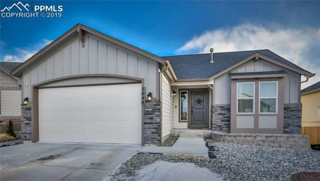 7044 Mustang Rim Drive, Colorado Springs, CO 80923 (#1814953) :: Tommy Daly Home Team