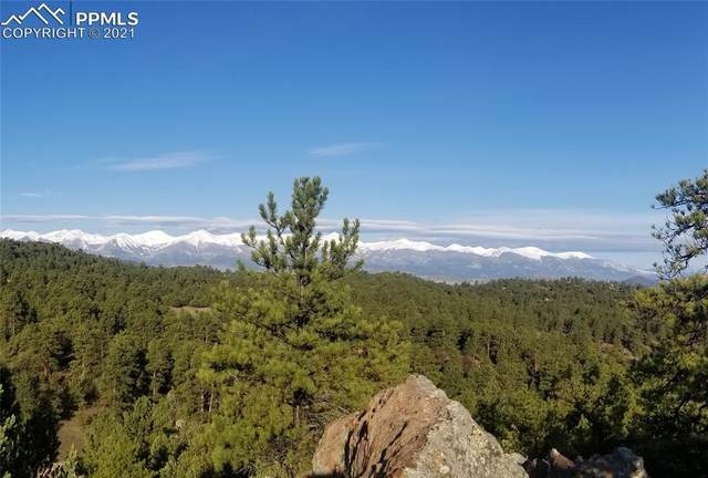 780 Rocky Ridge Road, Westcliffe, CO 81252 (#1826893) :: Tommy Daly Home Team