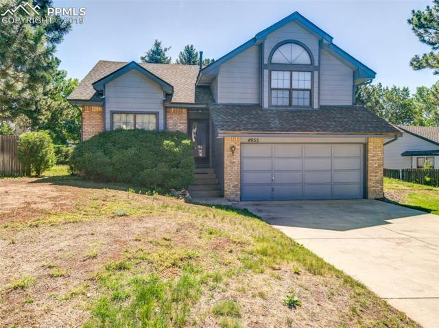 4955 Champagne Drive, Colorado Springs, CO 80919 (#1826911) :: Fisk Team, RE/MAX Properties, Inc.