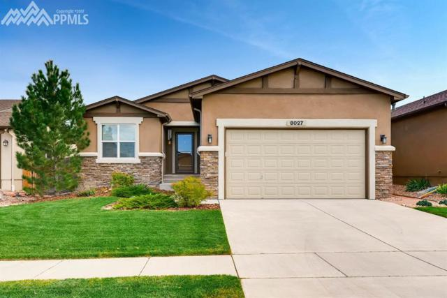 8027 Mount Huron Trail, Colorado Springs, CO 80924 (#1827797) :: 8z Real Estate
