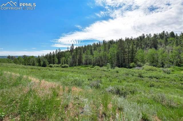 1620 Park Ridge Drive, Florissant, CO 80816 (#1828827) :: Compass Colorado Realty