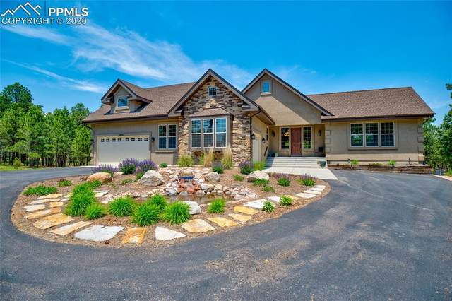15685 Pole Pine Point, Colorado Springs, CO 80908 (#1829825) :: Tommy Daly Home Team