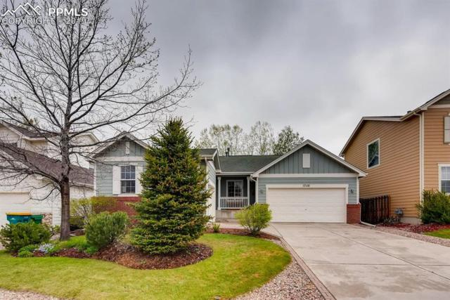 17110 Mountain Lake Drive, Colorado Springs, CO 80132 (#1833777) :: The Kibler Group
