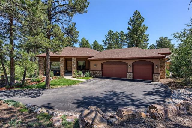 7872 Taylor Circle, Larkspur, CO 80118 (#1835202) :: 8z Real Estate