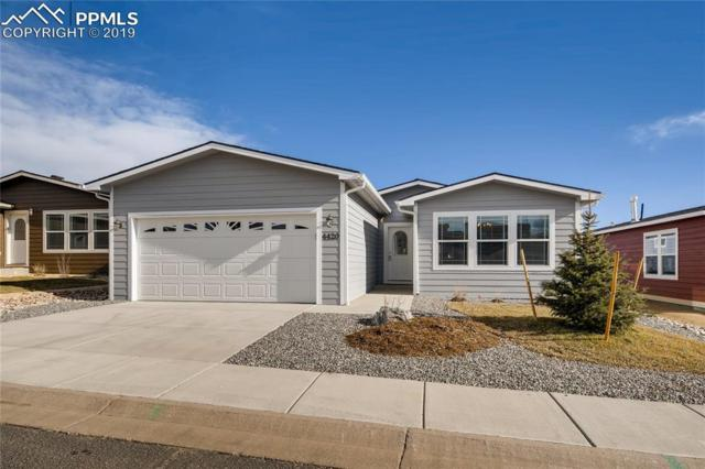 4372 Gray Fox Heights, Colorado Springs, CO 80922 (#1836069) :: Colorado Home Finder Realty