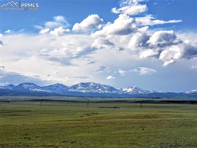 TBD Bare Trail, Hartsel, CO 80449 (#1838636) :: 8z Real Estate