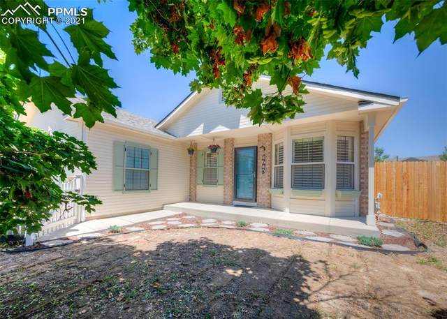 4645 Ramblewood Drive, Colorado Springs, CO 80920 (#1840847) :: Fisk Team, RE/MAX Properties, Inc.