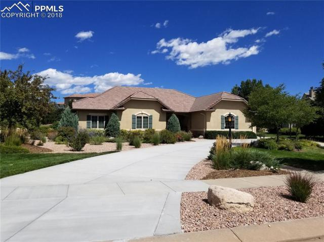 9741 Pinnacle Knoll Court, Colorado Springs, CO 80920 (#1841132) :: Jason Daniels & Associates at RE/MAX Millennium