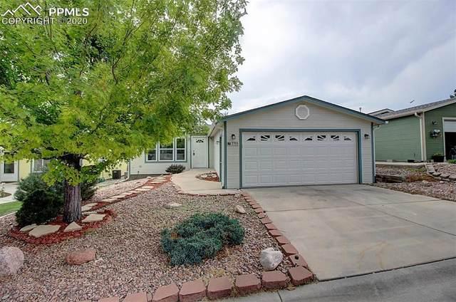 7755 Black Bear Point, Colorado Springs, CO 80922 (#1842201) :: 8z Real Estate