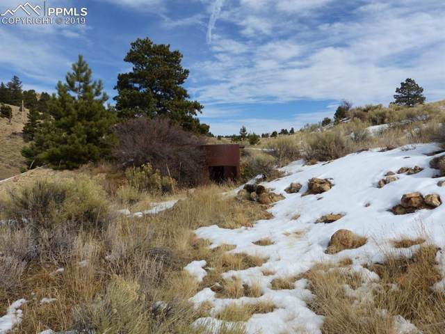 TBD County 341 Road, Westcliffe, CO 81252 (#1843267) :: The Kibler Group