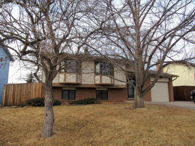 1430 Commanchero Drive, Colorado Springs, CO 80915 (#1852271) :: 8z Real Estate