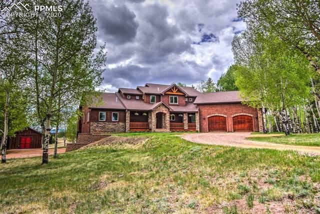 1471 Cedar Mountain Road, Divide, CO 80814 (#1854901) :: 8z Real Estate